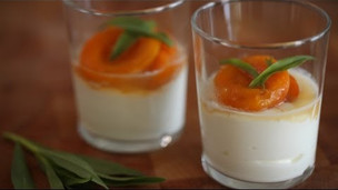 Poached Apricots With Greek Yogurt