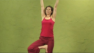 Flow to Tree Pose
