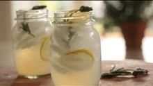 Unique Bathtub Gin Cocktail