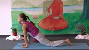 Intermediate Yoga Vidya  Class