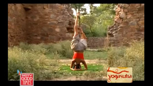 Thumbnail image for Inverted Yoga for a Healthy Mind