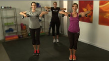 Tone Arms in 10 Minutes