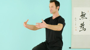 Shake and Flow: 40 min. Basics