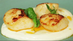 Thumbnail image for Seared Scallops with Chorizo Butter, Cauliflower Puree and Pea Shoots