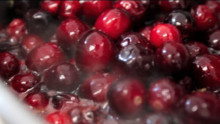 Very Fresh Cranberry Sauce