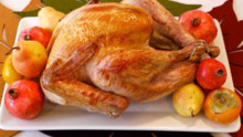 Thanksgiving Recipes: How to Cook a Turkey