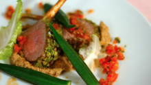 Wasabi Crusted Lamb Chops