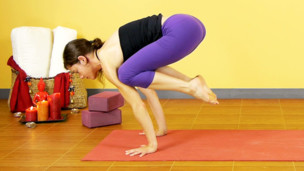 Thumbnail image for Crane Pose