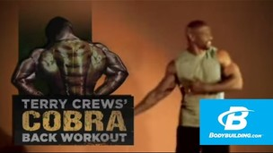 Thumbnail image for Cobra Back Workout