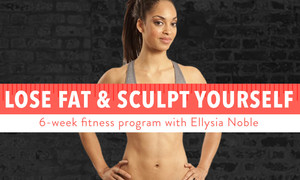 Lose Fat & Sculpt Yourself