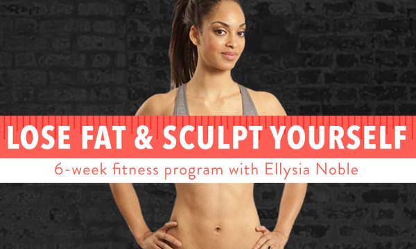Lose Fat & Sculpt Yourself