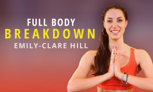 Full Body Breakdown