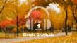 Thumbnail image for Day 1 – Gratitude – Simple Gratitude