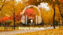 Day 1 – Gratitude – Simple Gratitude