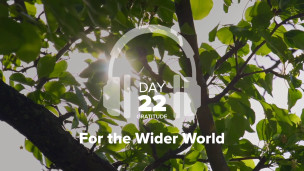 Thumbnail image for Day 22 – Gratitude – For the Wider World