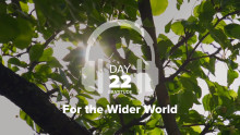 Day 22 – Gratitude – For the Wider World