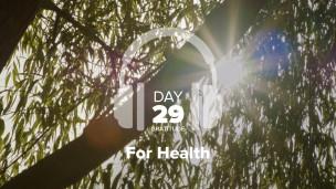 Thumbnail image for Day 29 – Gratitude – For Health