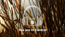 Day 5 – Confidence – You are in Control